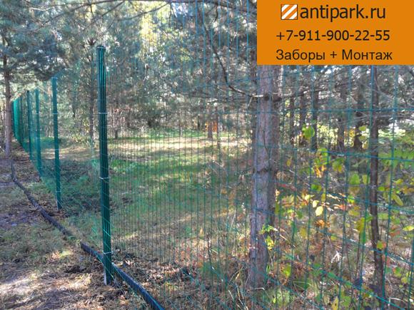 Забор из сетки рабицы установка